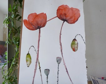 original Watercolour: red poppy, Red poppy