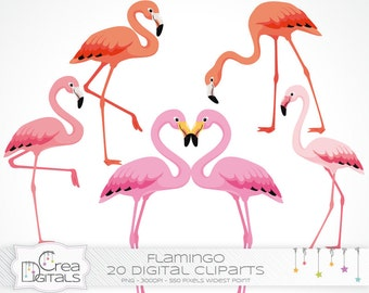 Pink flamingo clipart - 20 digital cliparts - INSTANT DOWNLOAD