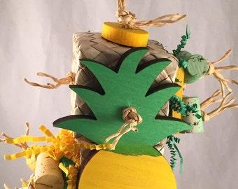 Pineapple Box Forager - Bird Toy