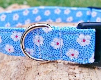 Light Blue, Delicate White Summer Flowers, Designer Dog Collar