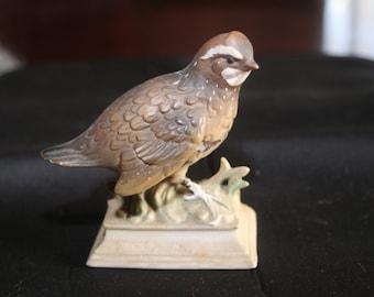 Rare Vintage NAPCOWARE c-7163 japan Bob White / Quail ceramic bird!  Adorable little bird for you or a gift for a friend!