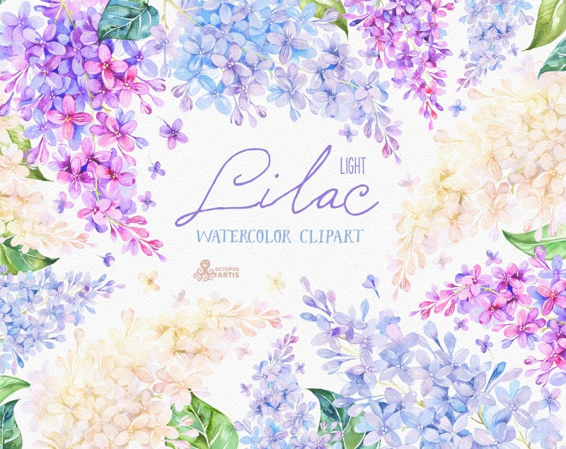 Lilac Light. Watercolor Clipart, card, floral elements ...