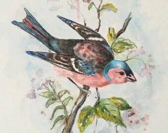 Pink and Blue Bird an ORIGINAL 8x10 Painting