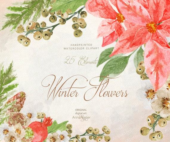 Winter Flowers WATERCOLOR Clipart Christmas digital