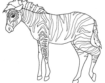DIGITAL DOWNLOAD Zoo Animal Adult Coloring Book Pages Wild Color In Digital