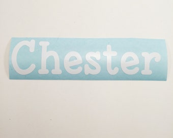 Name Decal - Vinyl Name Decal - Name Sticker -Vinyl Name - Vinyl Dog Bowl Name Decal - Car Decal - Name Gift - Personalized Dog Name Sticker