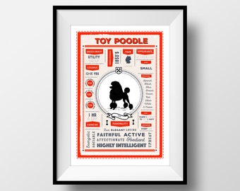 Poodle Poster, Toy, Miniature or Standard Poodle Print , Dog Infographic Print, Poodle Lovers Gift, Letterbox Red/Sea Green Digital Print