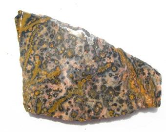 Orbicular jasper Leopard Skin Jasper rough slab Jaguar Stone rough slab Leopard skin jewelry