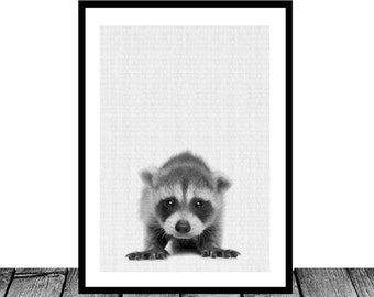 Racoon Print, Instand download, woodlands animal print, Nursery wall art, Nursery printable art, Nursery decor, woodlands racoon art