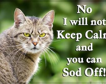 Grumpy Tabby Cat Fridge Magnet Gift
