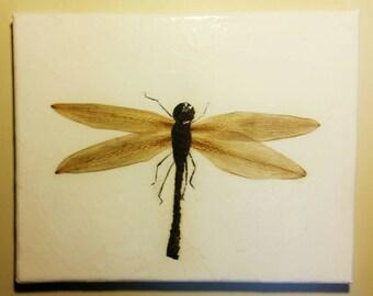 Pressed Flower Petal Dragonfly
