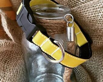 Dog Collar Yellow, Bright Collar, Bright Yellow Dog Collar