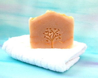 Coconut Milk  Soap, Unscented Soap, Made with Oatmeal and Honey, Coconut Milk and Honey,  Natural Soap, Cold Processed soap, Hand made soap