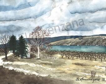 Vineyard on Keuka Lake, New York - unframed original Watercolor