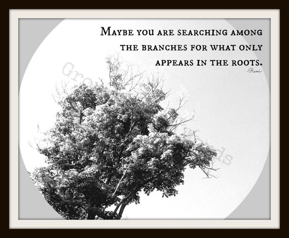 Rumi Quote Art, Maybe you are searching among the branches, Original Tree Photograph and Word Art, Instant Download, 8 x 10 PDF