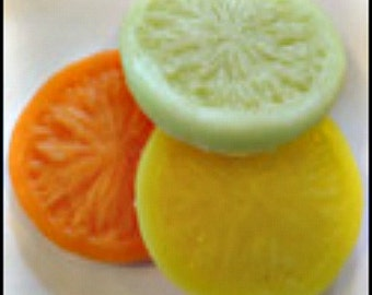 Fruit Rounds Wax Embeds - Fake Foods