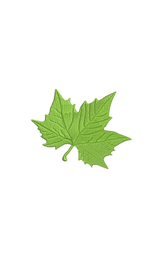 Maple leaf machine embroidery design from tankoro on etsy