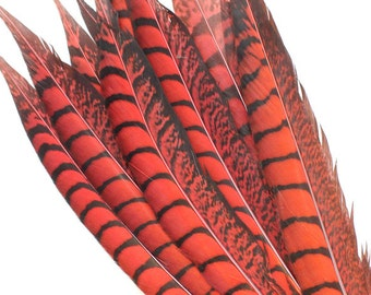 11-13 Inch Red Lady Amherst Feathers. Red Bird Feathers. Red Pheasant Feathers. Red Pheasant Tail Feathers. Colored Bird Tails. Mask Feather