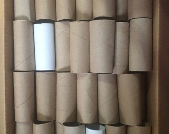 Items Similar To Upcycled Toilet Paper Rolls Recycle