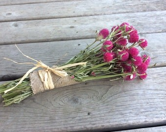 Dried Bouquet of Bright Pink Gomphrena