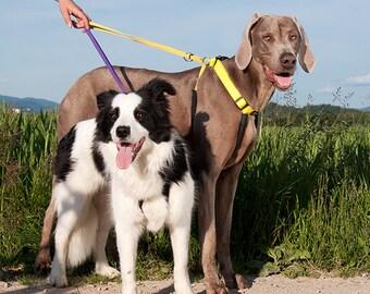 NON-PULL dog harness