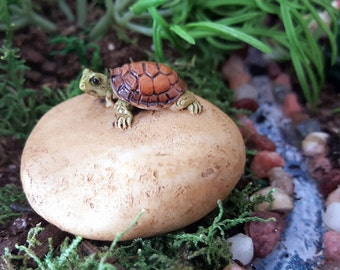 Miniature Turtle on a Stone