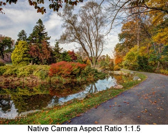 Autumn Walkway: Landscape art photography prints for home or office wall decor.