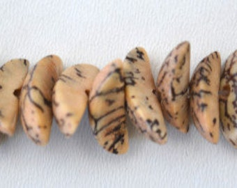 14x6mm Spotted Coconut Beads Sold by 1 strand of 90pcs, 1mm hole opening, 23.6grams/pk