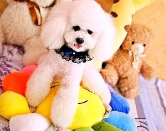 Dog Collar - Cat Collar - Dog Accesories- Navy Ribbon - Lace - Pearl - Cinderella - Pet Accessories