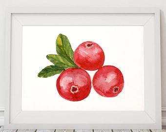 Cranberry art Food print Kitchen print Berries poster ACW448