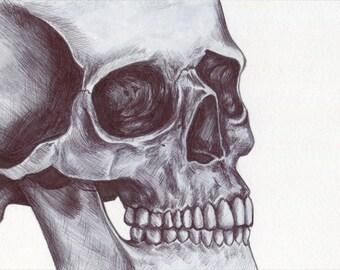 Skull Art Print - Pen Drawing, Skull Illustration