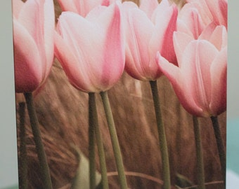 Photographic Greeting Card - Tangled Tulip