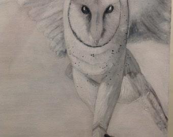 White owl acrylic painting