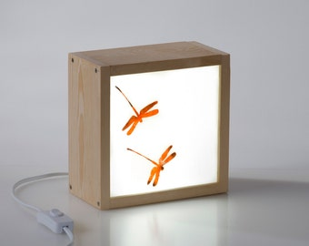 Light Box Dragonflies