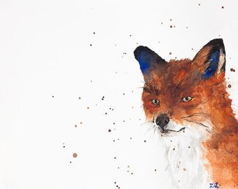 Willy Fox