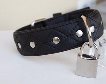 Nylon Collar Locks 74
