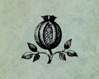 Pomegranate - Antique Style Clear Stamp
