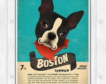 Boston Terrier Poster Dog Breed Characteristics Original Artwork Print US size & Euro size