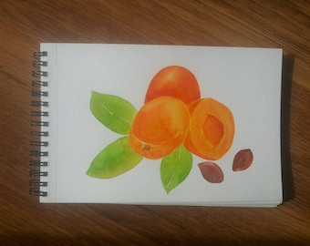 Watercolor painting apricots, apricot painting, original watercolor painting, kitchen art, fruit art, wall decor