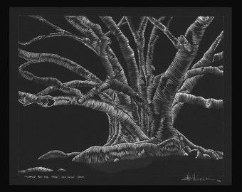 Morton Bay Fig Tree, Balboa Park, San Diego, California - print only