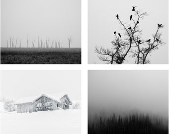 Winter Photo - Winter Photo Set - Winter Prints - Black and White - Set of 4 Photos - Set of Four - Digital Photo - Digital Download - Sale