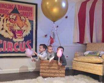 Circus Pom Pom Decor