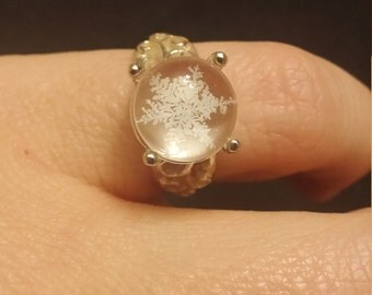 Real preserved Snowflake Ring A002