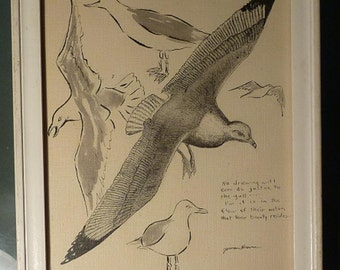 Vintage Original Pen and Ink Drawing of Seagulls