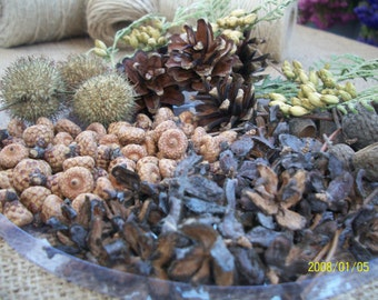 Dried plants vase filler bowl primitive fall arrangements centerpiece