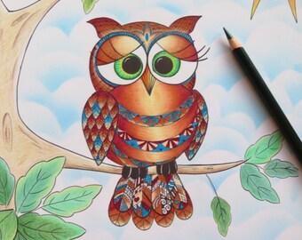 Lil Ollie owl