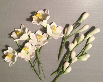 Gum Paste Filler Flowers- Jasmine, Hydrangea, Agapanthus