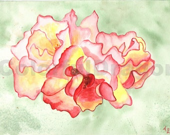 watercolor, painting, flower, red