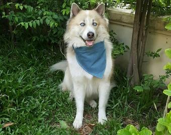 Blue jeans fabric dogs bandanas
