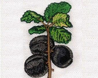 Not Glum Plum Digital Embroidery Design